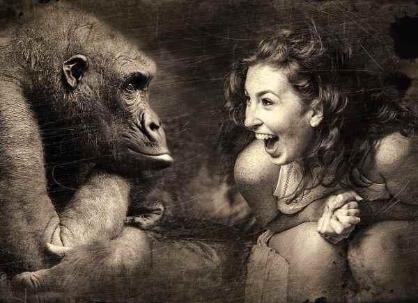 женщине приснилась обезьяна
